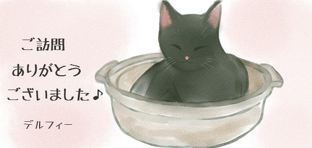 s-猫鍋.jpg