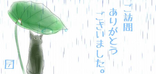 s-雨降り猫.jpg